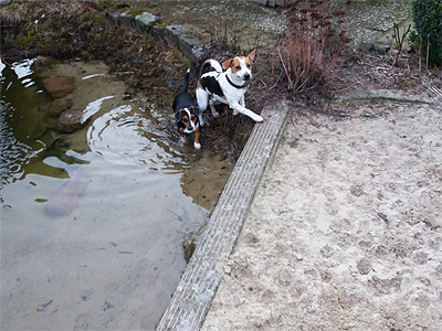 Wassertreten